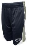 Penn State Nittany Lions Vector Shorts