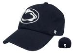 Penn State Logo Franchise