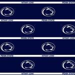 Penn State 20