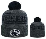 Penn State Adult Sockit To Me Knit Hat GREYNAVY
