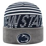 Penn State Array Knit Hat