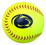 Penn State Synthetic Softball